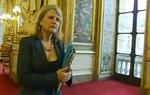 Délivrance et renouvellement des papiers d'identité pour les Français nés à l'étranger – Reportage pour France 2